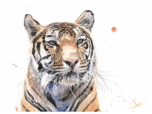 Madonna Tiger Original Watercolor Painting