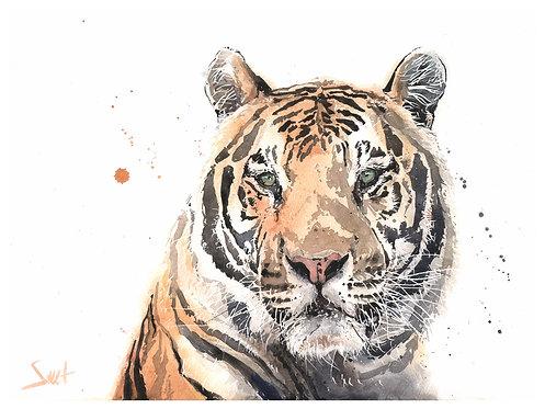 Rajah Tiger Print