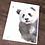 Thumbnail: Panda Cub Watercolor Print