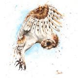 Barn Owl Watercolor, 16x20, 2015