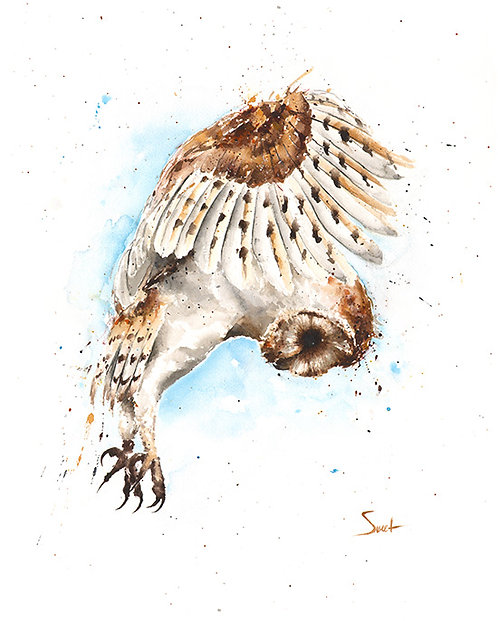 Barn Owl Watercolor Print