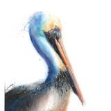 Watercolor Pelican, 13x19, 2016