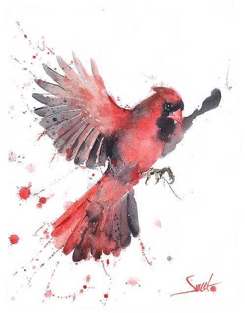Flying Cardinal Watercolor Print 2