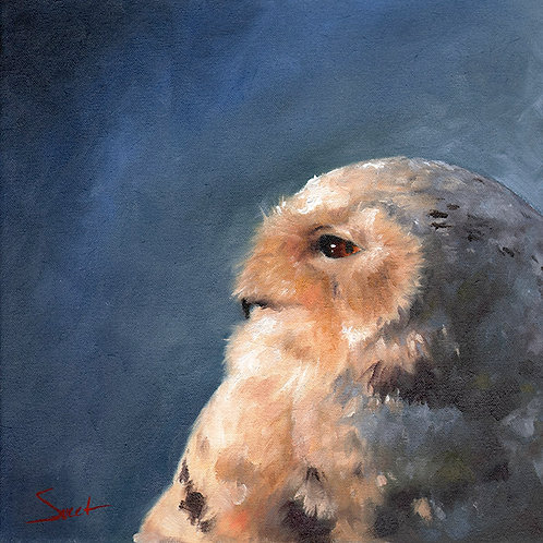 Snowy Owl Oil Painting