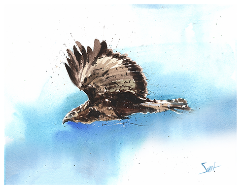 Golden Eagle Watercolor Print
