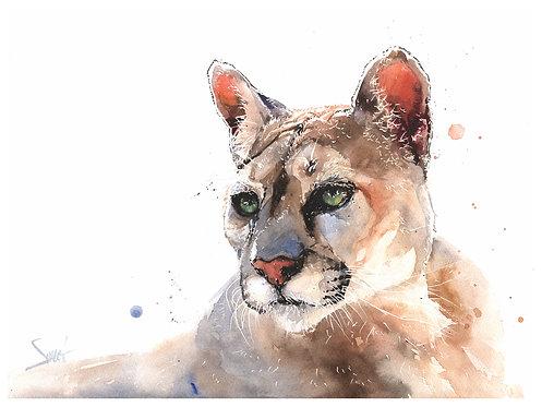 Star Cougar Original Watercolor Painting