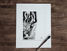 Tiger web.png