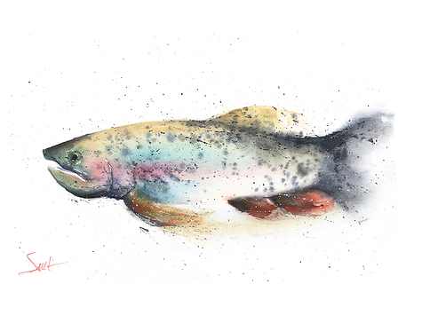 Trout Original Watercolor Painting