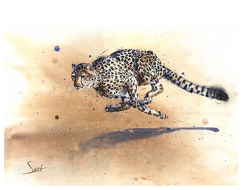 Cheetah Running Watercolor Print
