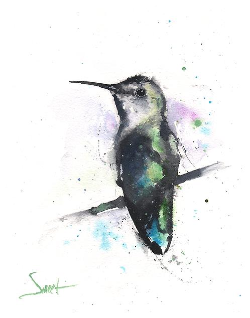 Anna's Hummingbird Watercolor Print