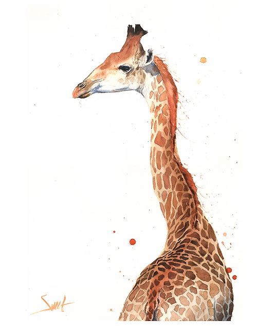 Giraffe Watercolor Print 4