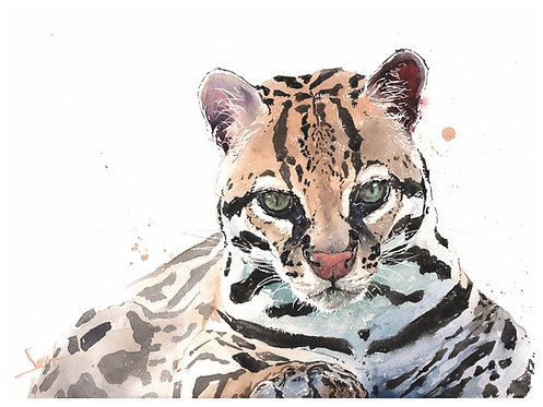 Magoo Ocelot Original Watercolor Painting