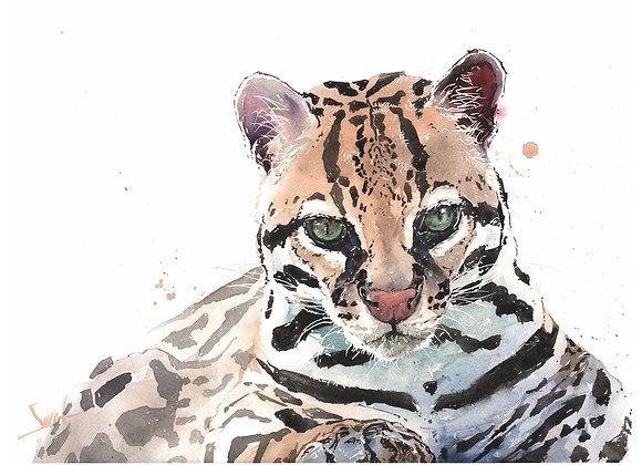 Magoo Ocelot Original Watercolor Painting