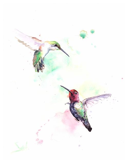 Dancing Hummingbirds Watercolor Print