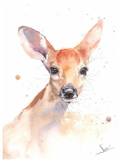 Deer Fawn Watercolor Print