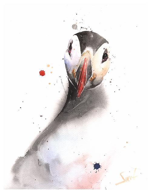 Puffin Watercolor Print