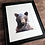 Thumbnail: Black Bear Watercolor Print