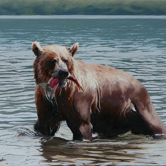 Grizzly, 30x24, 2019