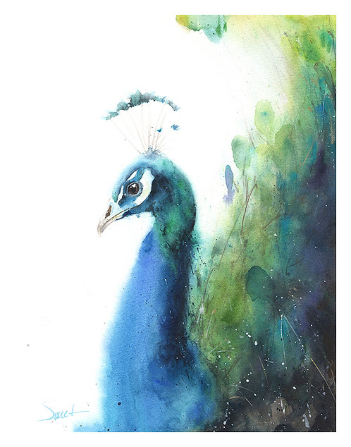 Peacock Watercolor Print