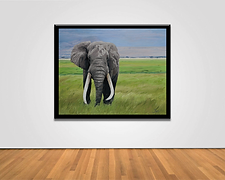 Elephant Framed.png