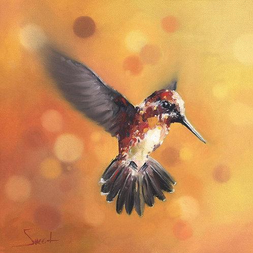 Orange Hummingbird Oil Painting