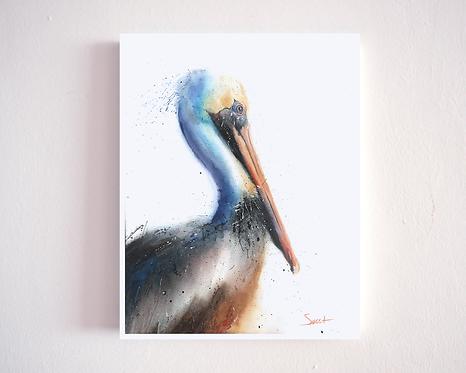 Pelican Watercolor Print