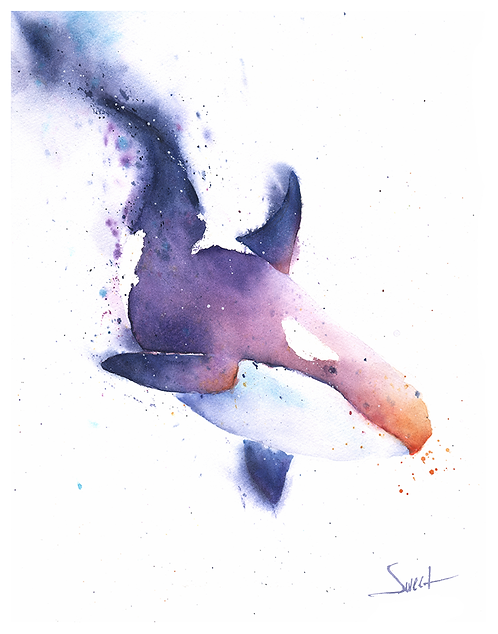 Orca Whale Watercolor Print