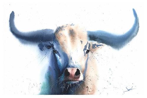 Bull Watercolor Print