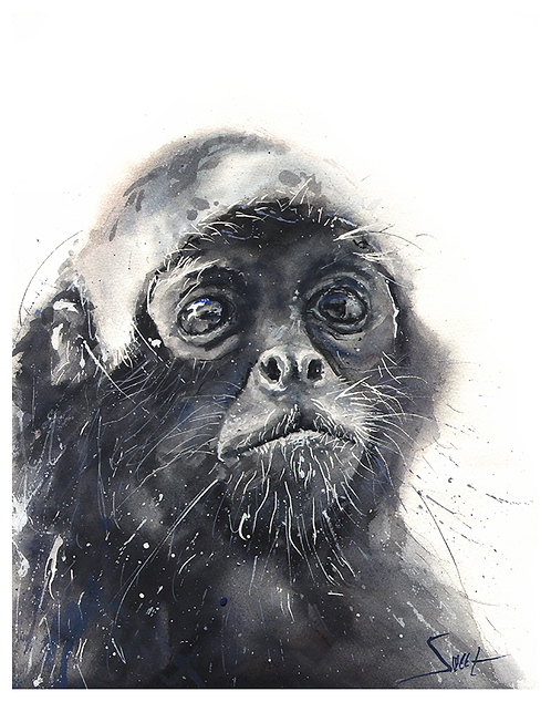 Spider Monkey Watercolor Print