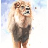 Lion Watercolor, 14x20, 2018