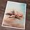 Thumbnail: Starfish Watercolor Print