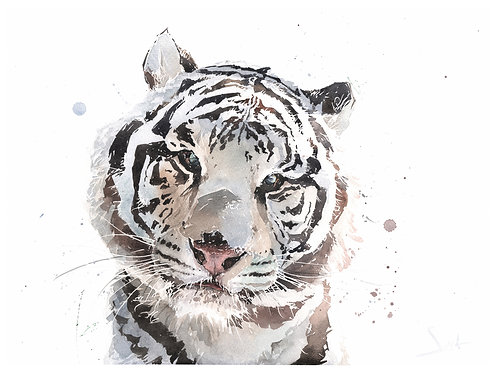 Saber Tiger Print