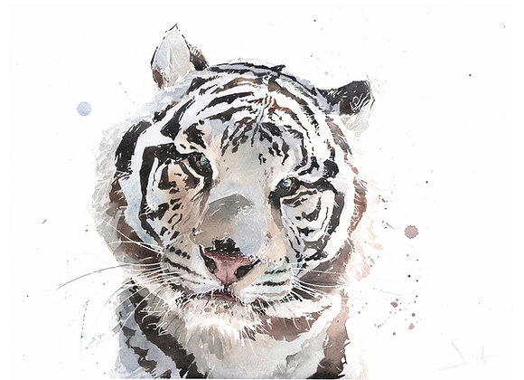 Saber Tiger Original Watercolor Painting