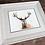 Thumbnail: Elk Original Watercolor Painting