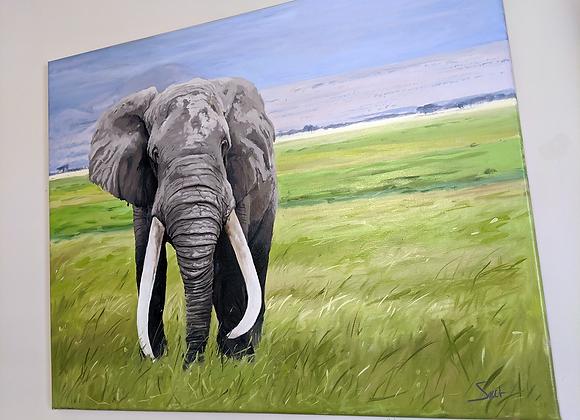 Original 'Tusks' Oil Painting