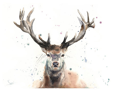Elk Watercolor Print