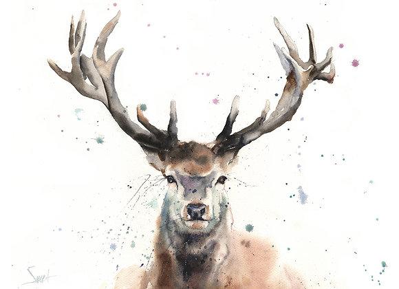 Elk Original Watercolor Painting