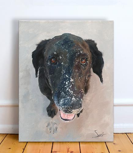 Custom 11x14 in. Pet Portrait or Wildlife Commission