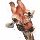 Giraffe Watercolor, 12x16, 2019