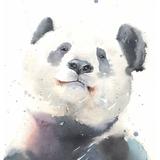 Giant Panda Watercolor, 11x14, 2019