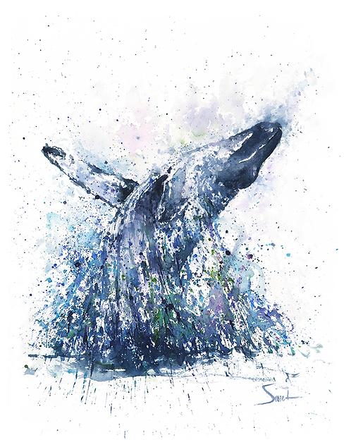 Humpback Whale Watercolor Print