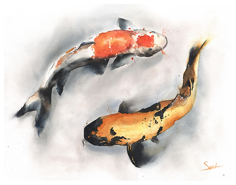 Koi Fish Original Watercolor Painting
