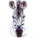Watercolor Zebra, 16x20, 2016
