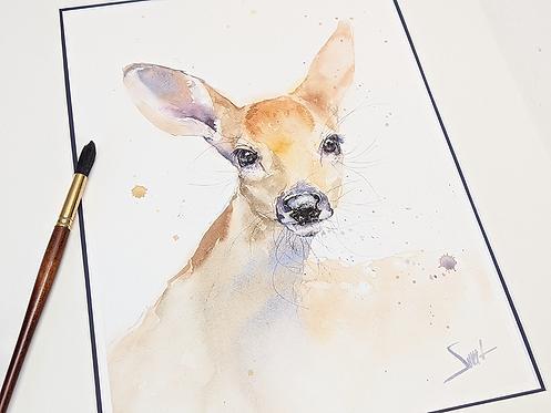 Deer Fawn Original Watercolor