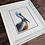 Thumbnail: Pelican Watercolor Print