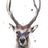 Buck Watercolor, 16x20, 2019