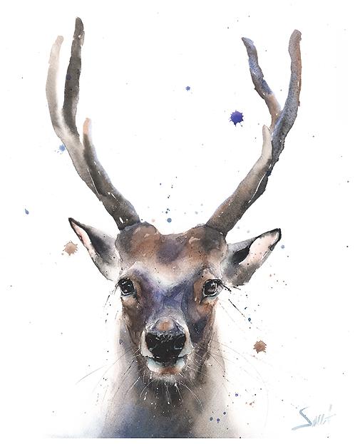 Buck Watercolor Print
