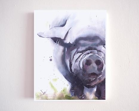 Pig No. 3 Watercolor Print