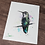 Thumbnail: Anna's Hummingbird Watercolor Print