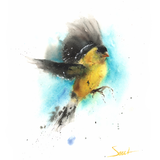 Watercolor Goldfinch, 11x14, 2016